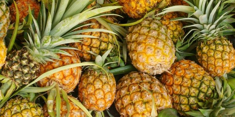 Интересные факты об ананасах